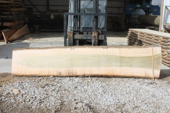 "133 - 10 Poplar 2"" x 28"" - 23"" Wide x 12' Long  Kiln dried"