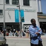 Montery Bay Aquarium, USA - 207779595_f80ce894d6.jpg