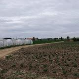 Westhoek aug 2013 - 15-8-2013%2B_%2B10_56_22%2BDSCF5104.JPG