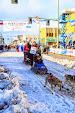 Iditarod2015_0362.JPG