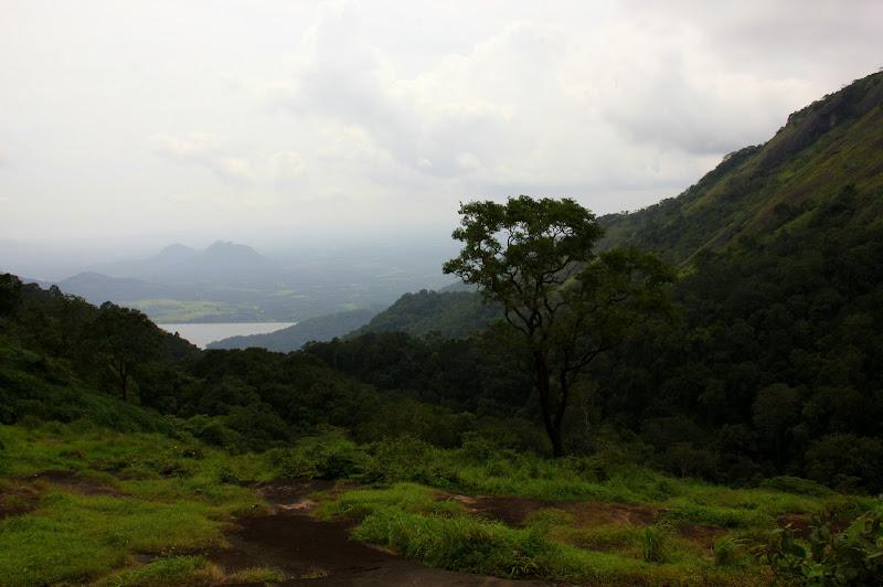 #Travelbloggerindia #Travelblog #keralatravelblog #keralatourism #Nelliyampathy