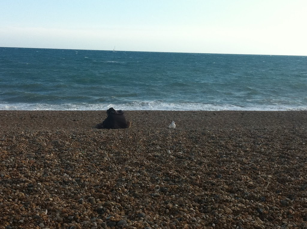 20110611_BrightonBeach
