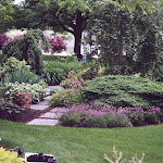 images-Job Coordination and Management-plantings_5.jpg