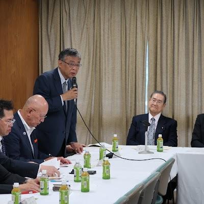 201800618自民党薬剤師問題議員懇談会世話人会・総会-08.JPG