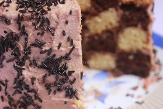 Checkerboard Cake6
