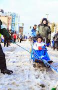 Iditarod2015_0306.JPG