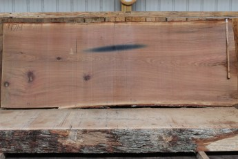 "471 White Oak -1 2 1/2 "" x 50"" x 48"" Wide x 10' Long"