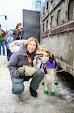 Iditarod2015_0066.JPG