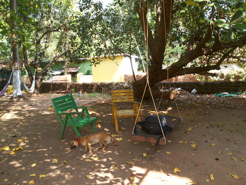 A swing to laze-around, Red Door Hostel - Goa