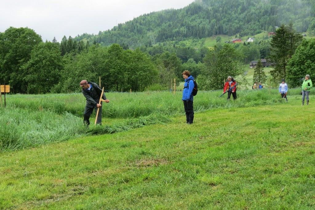 Kosidba u Norveskoj- Turisticka organizacija opštine Ljig155