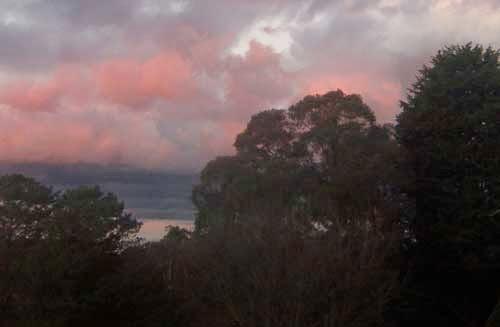 a coral dawn over Katoomba