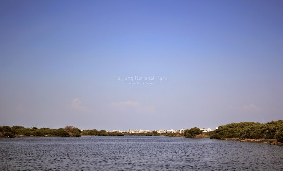 台江國家公園,四草湖生態之旅-9