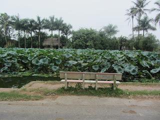 0019Duong_Lam_Village