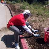 IVLP 2010 - Volunteer Work at Presidio Trust - 100_1427.JPG