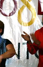 DistritoSur_2008MayoBaja99.jpg