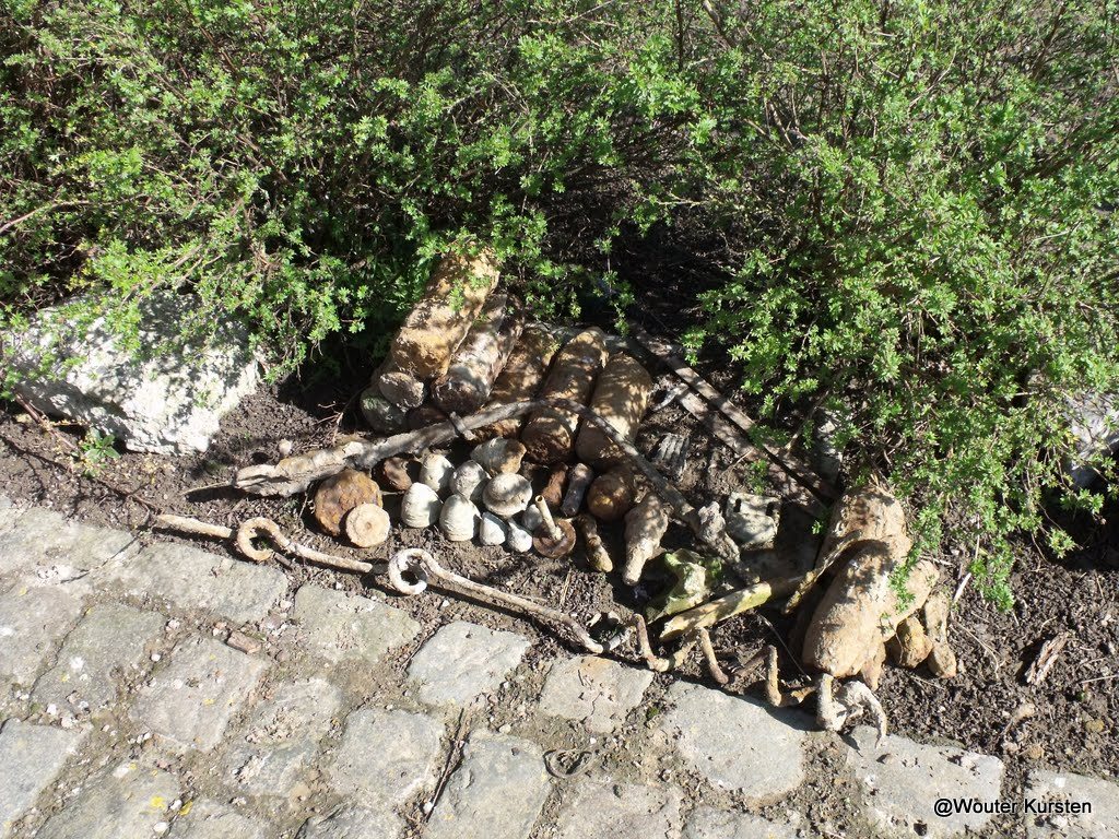 Westhoek Maart 2011 - 2011-03-19%2B11-49-40%2B-%2BDSCF1998.JPG