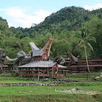 0289_Indonesien_Limberg.JPG