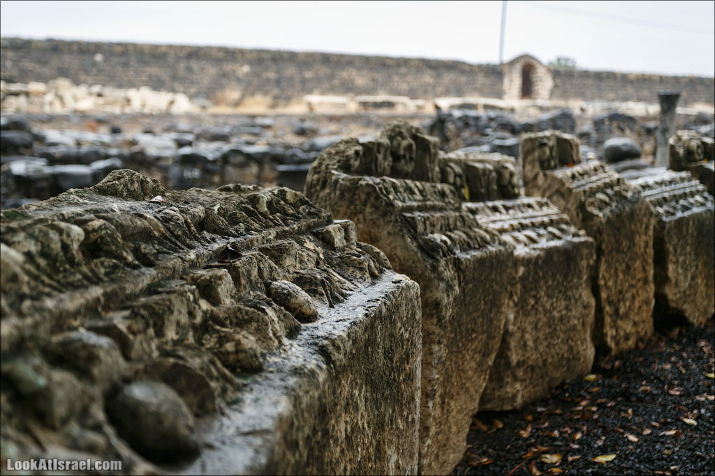 Капернаум   Capernaum   LookAtIsrael.com - Фото путешествия по Израилю