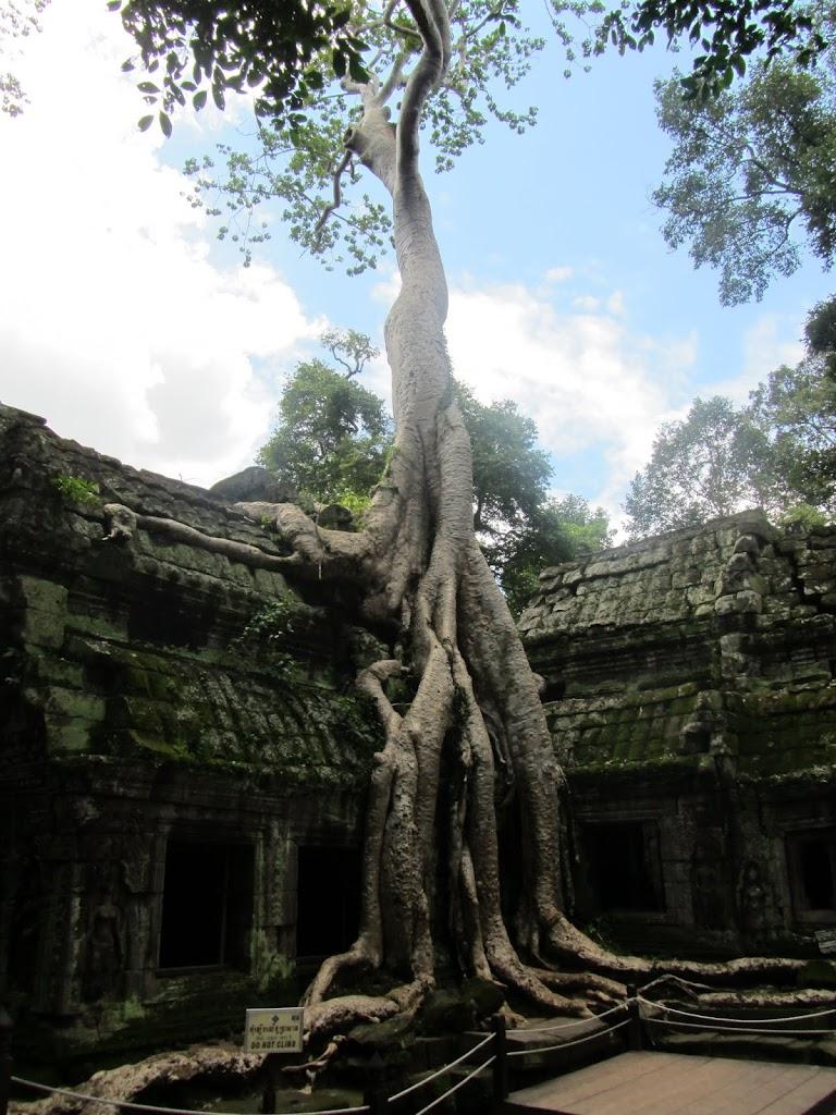 0126Angkor_Wat