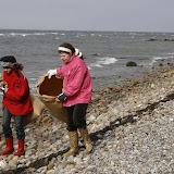 Strandstädning - _MG_4062.JPG