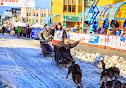Iditarod2015_0345.JPG
