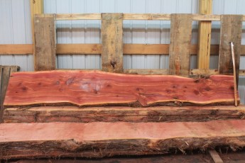 "Cedar 282-3  Length 10' 6"" Max Width (inches) 21 Min Width (inches) 14 Thickness 6/4  Notes : Kiln Dried"