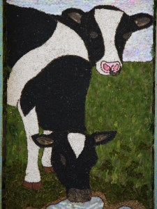 Close up of Cows at Coffin Well