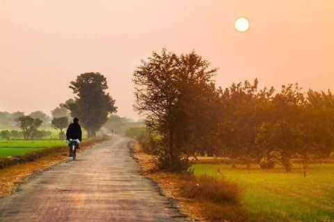 Image result for images of punjabi pind