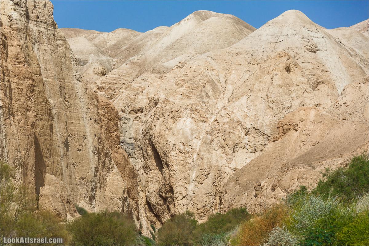 На индейце по Иудейской пустыне к Моисею, Савве и козлу
