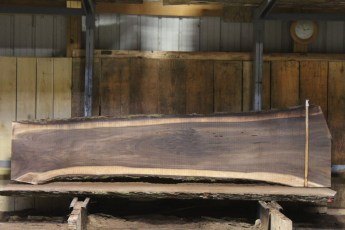 "607 Walnut - 14 5/4 x 32"" x 20"" Wide x  10'  Long"