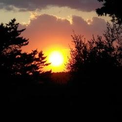 Autumn-2017-spiritual-meditation-retreat-Satguru-Sirio-Satsang3.jpg
