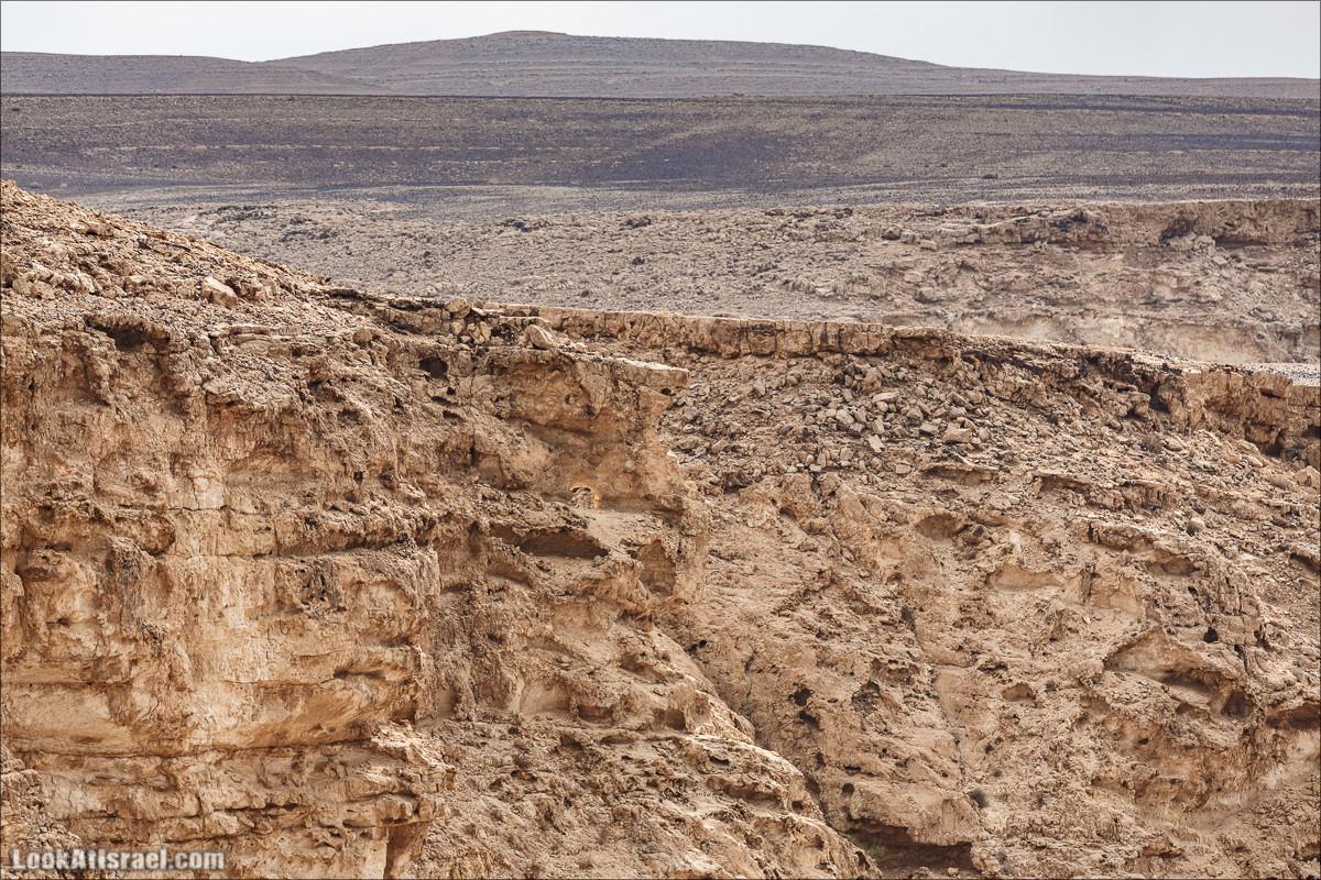 Неопалимая купина на горе Карком