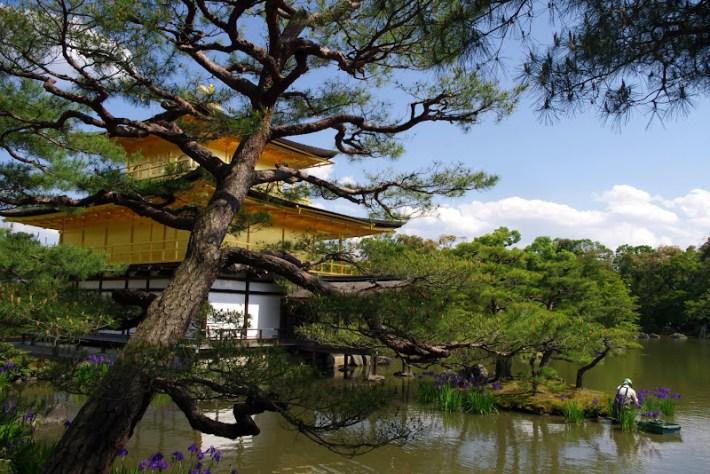 Qué ver en Kioto. Templo dorado