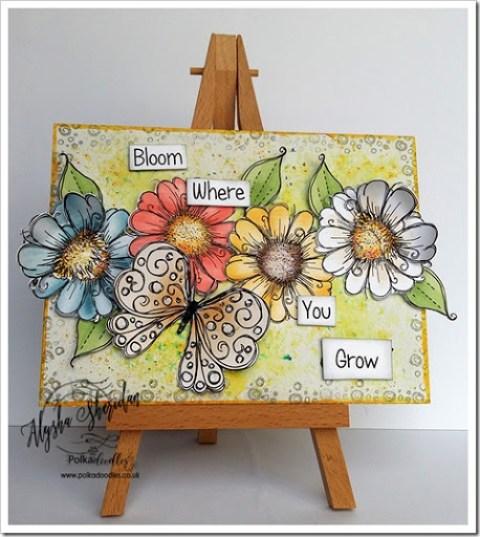 bloom where you grow using Daisydays cd