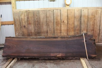"464 Walnut -2 2 1/2"" x 25"" x 24"" Wide x 10' Long"