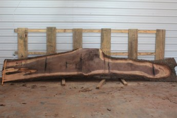 Walnut 219-7  Length 17' Max Width (inches) 34 Min Width (inches) 7 Notes 10/4 Kiln Dried