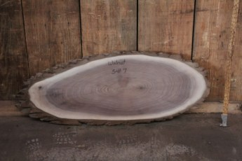 """541 Black Walnut -7  1""""x 42"""" Max Dia  x 16"""" Min Dia"""