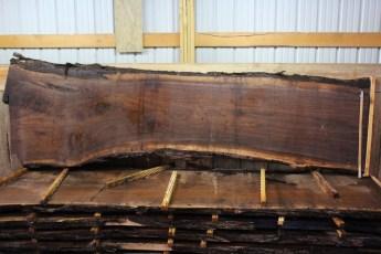 "Walnut 383-2  2 1/2"" x 42-32"" Wide x 12' Long  Kiln Dried"