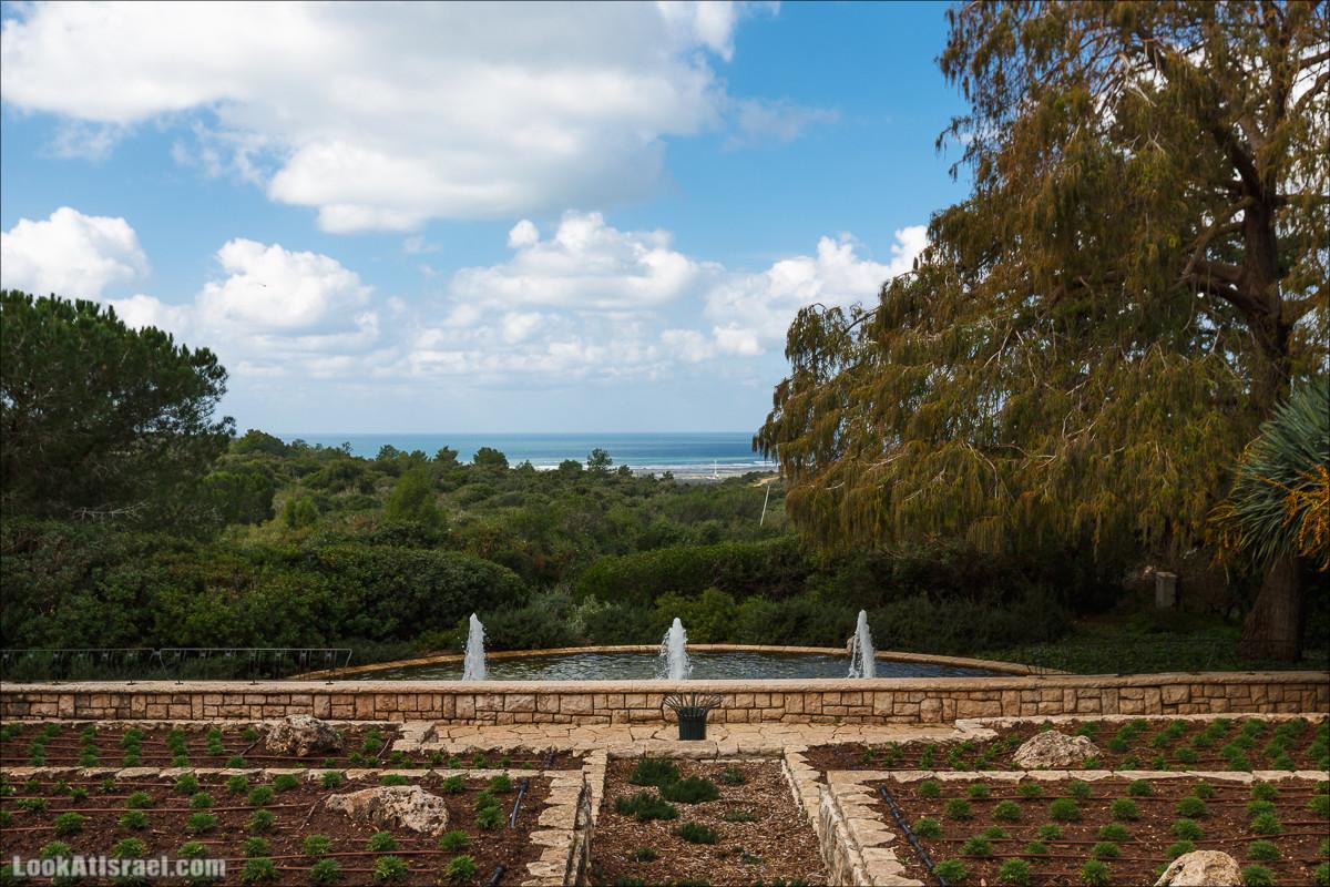 Рамат ха-Надив - Сады Ротшильда   Ramat ha-Nadiv - Rothschild Gardens   רמת הנדיב - גני רוטשילדLookAtIsrael.com - Фото путешествия по Израилю