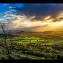 Primary 1st - Green Fields at Sunset _Mark Slater.jpg