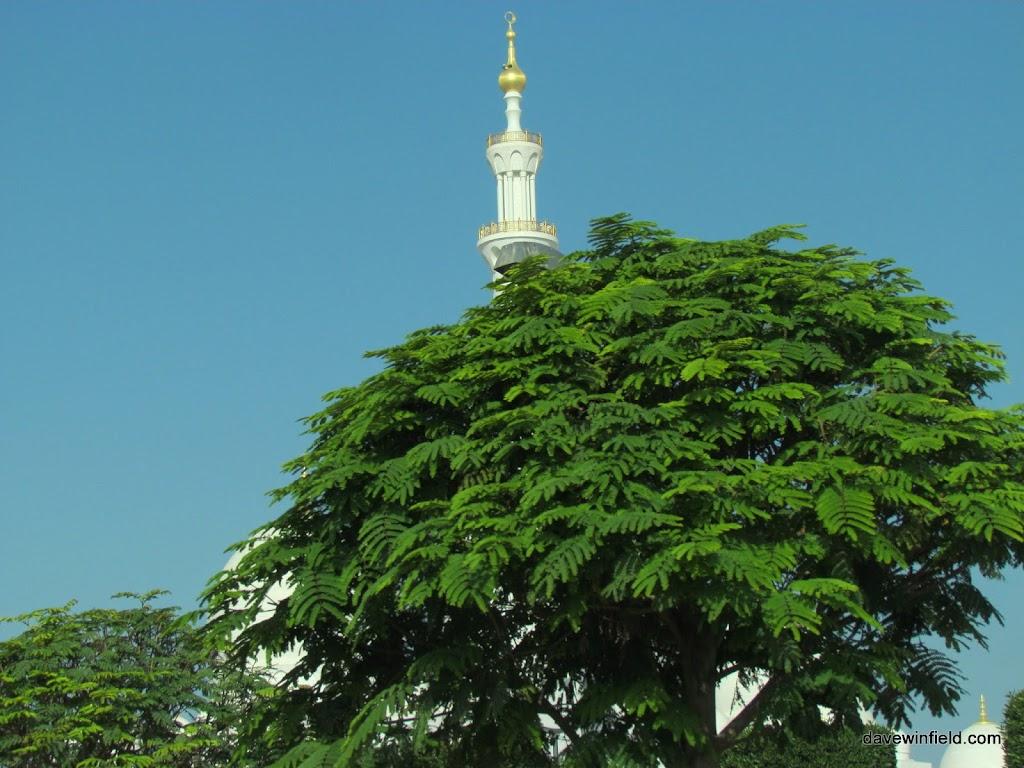 0060Sheik Zayfed Mosque