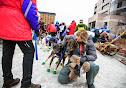 Iditarod2015_0088.JPG