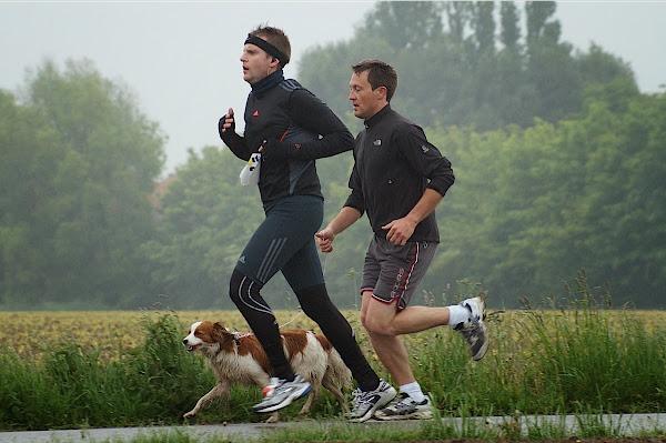 Dwars door de Zilten 2013 - 14 km - Jurgen Soenen