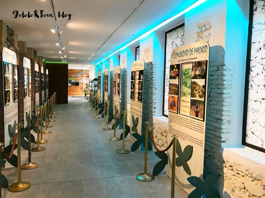 el-escorial-centro-de-naturaleza-insectpark-naturaleza-mariposas