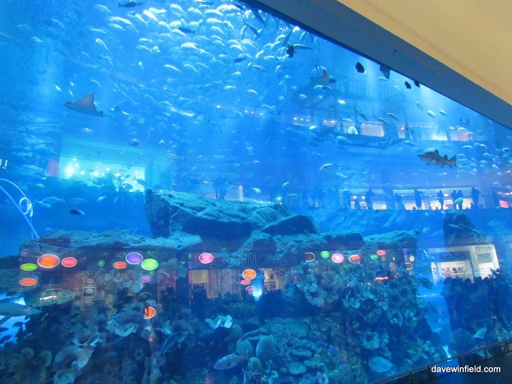 0210Dubai Mall