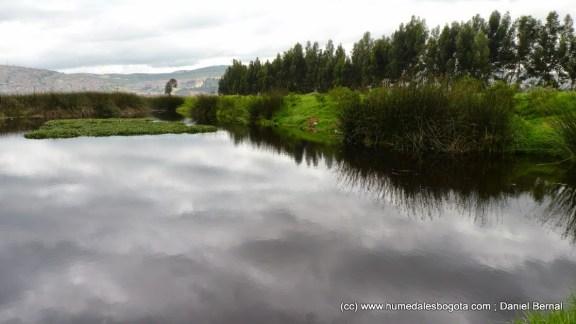 Espejo de agua principal del humedal Tibanica