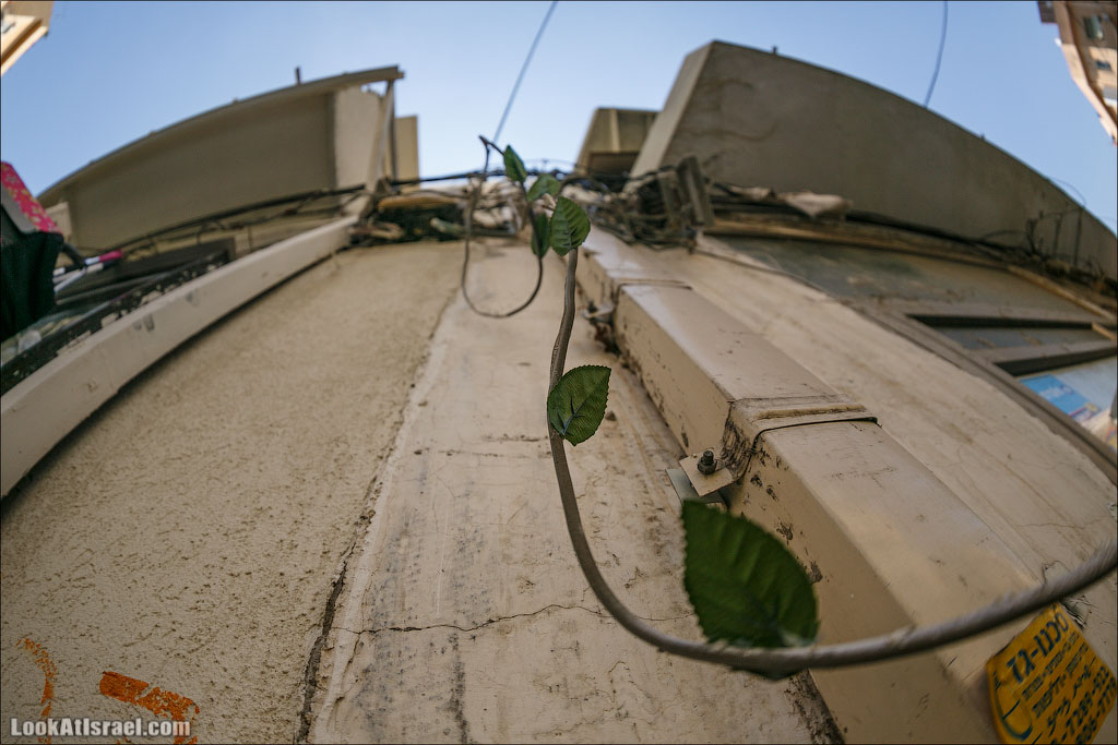Крошки Тель-Авива - случайные фотографии из жизни квартала Флорентин   LookAtIsrael.com - Фото путешествия по Израилю
