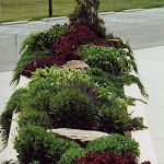 images-Job Coordination and Management-plantings_1.jpg