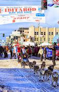 Iditarod2015_0361.JPG