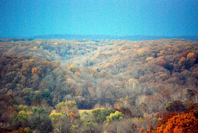 Clifty Hollow from the Bluff